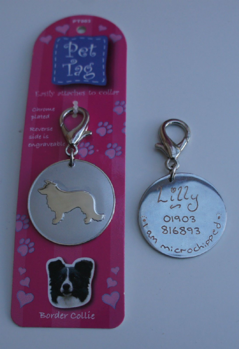 BORDER COLLIE ID TAG -  ENGRAVED FREE